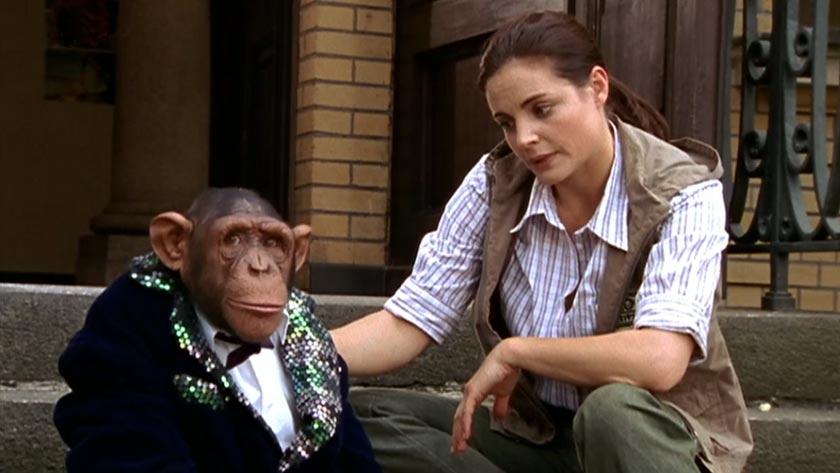 Tieraerztin Dr. Mertens